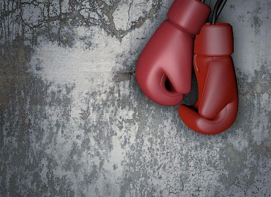 BOXE: Un gala national de boxe en perspective