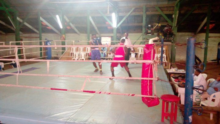 Fin de la 5e journée de la Ligue régionale de boxe du Centre