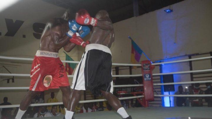 Boxe : Le gala professionnel « fight night 1 » livre ses premiers vainqueurs