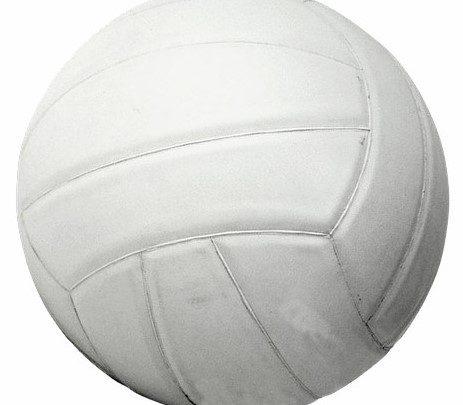Volley-ball : Camtel championship seniors dames et messieurs, mise au point avant le début de la compétition